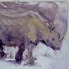 Rhino in a Zoo