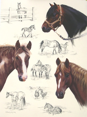 Pastel Portrait of Horses by Sally Baker Keller