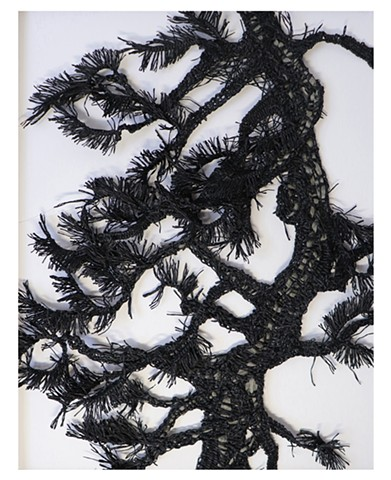 Shadow of the Pine No.2