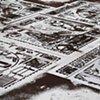 Dirt Carpet # 8