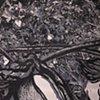 Cradle Of Childhood Memories On Cotton Stalk - detail
