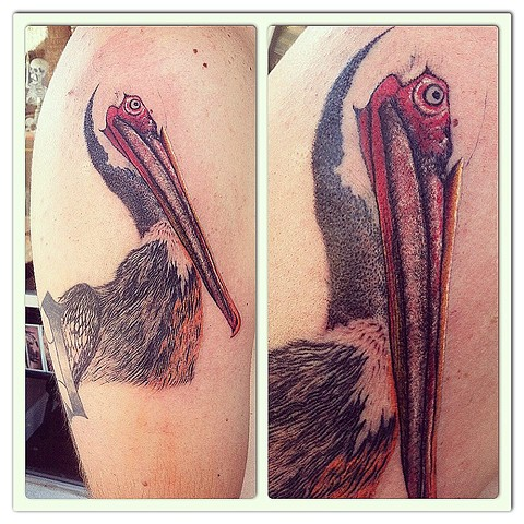 Charlie the Pelican under way