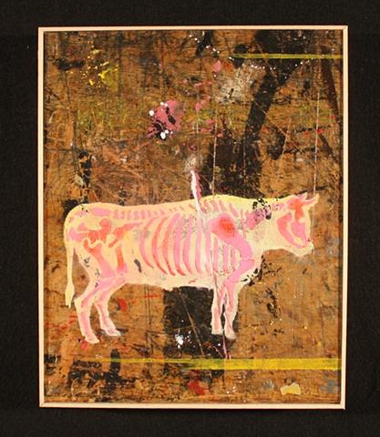 Bull #9