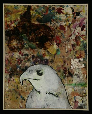 Hawk #5