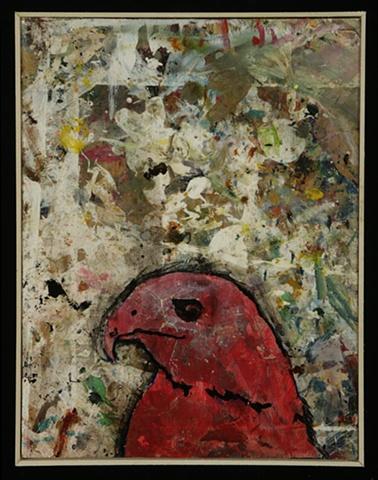 Hawk #7