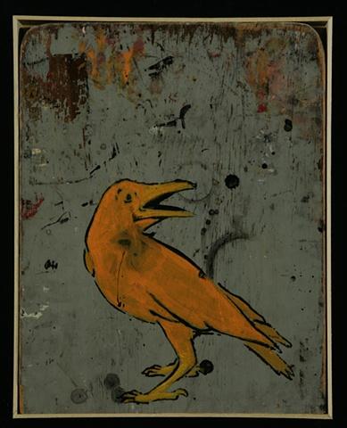 Crow #11