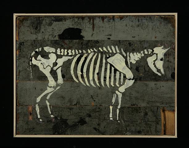 Bull #7