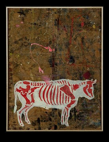 Bull #8