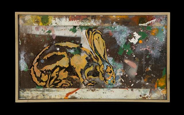 Rabbit #13