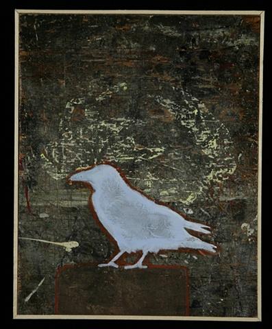 Crow #6