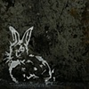 Rabbit #10