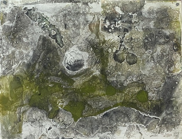 "Microcystis abstraction II   encaustic monotype on Rives lightweight, 26"" x 20"""