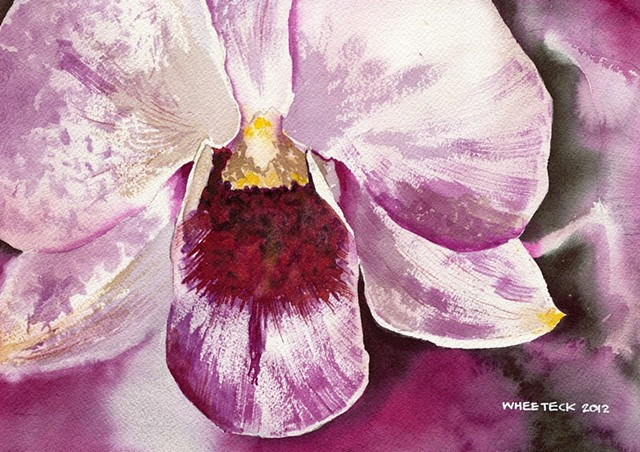 20120424 Orchid