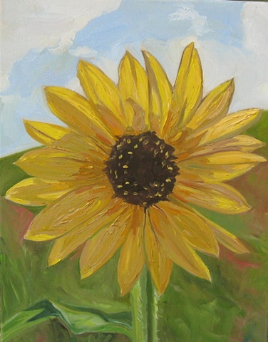 Texas Sunflower