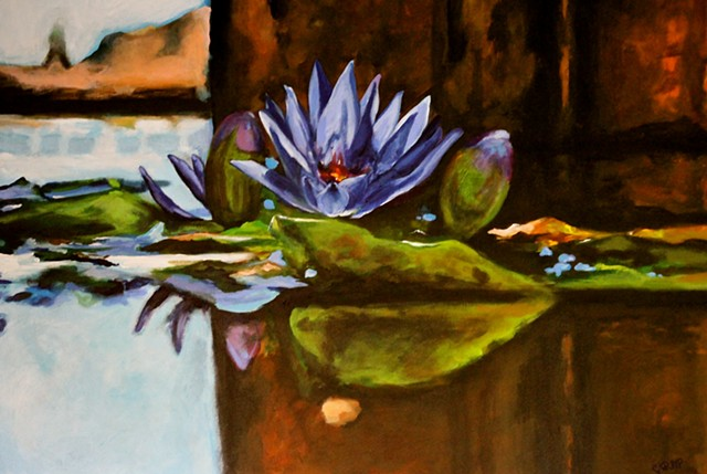 blue lotus in fountain