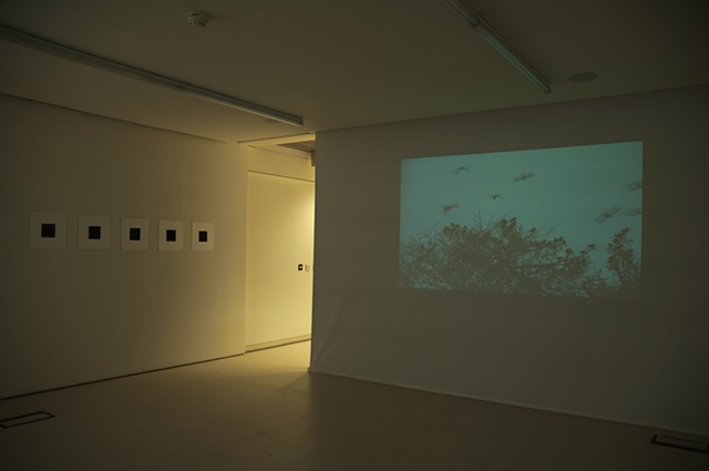 exhibition shot, ECA, 2011