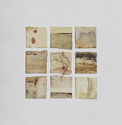 Plant material, raw beeswax, earth and charcoal from Wave Hill on paper