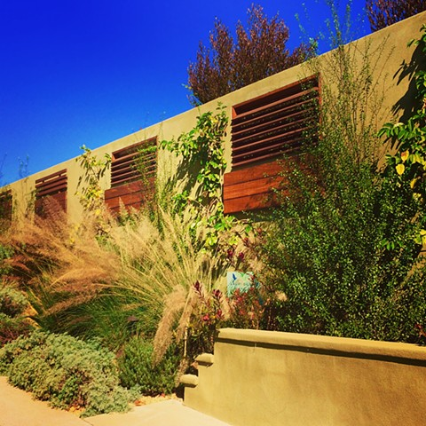Secrets Behind the Garden Wall