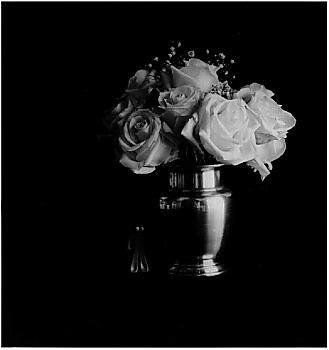 B&W gelatin silver photograph (analog)