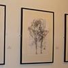 Garth Gallery - s