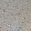 mud flakes