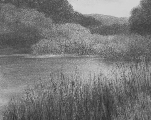 katherine meyer drawing charcoal monterey bay california