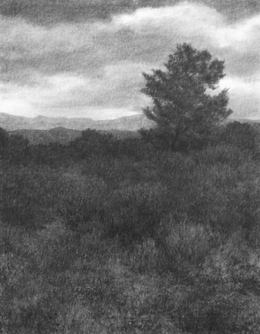 Katherine Meyer drawing charcoal New Mexico high desert