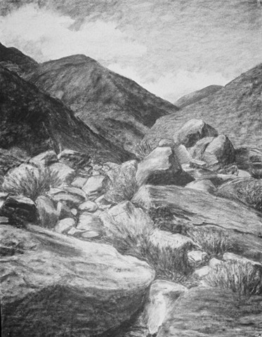 Katherine Meyer charcoal drawing Anza Borrego