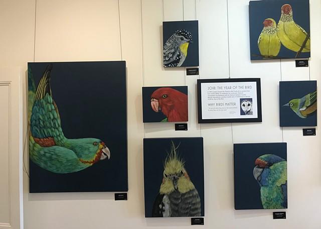 Installation Percolator gallery