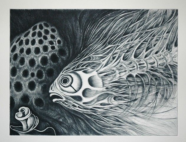 Skeleton Fish Drypoint