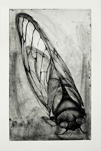 Intaglio Print, Soft ground
