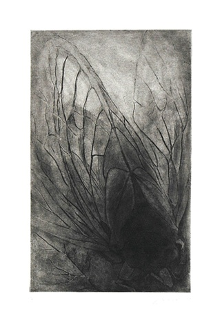 Intaglio, Soft ground and aquatint