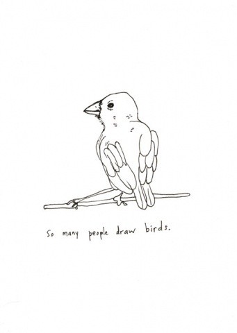 So Many People Draw Birds