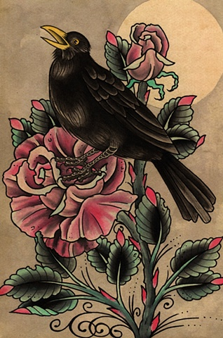 Black bird on rose