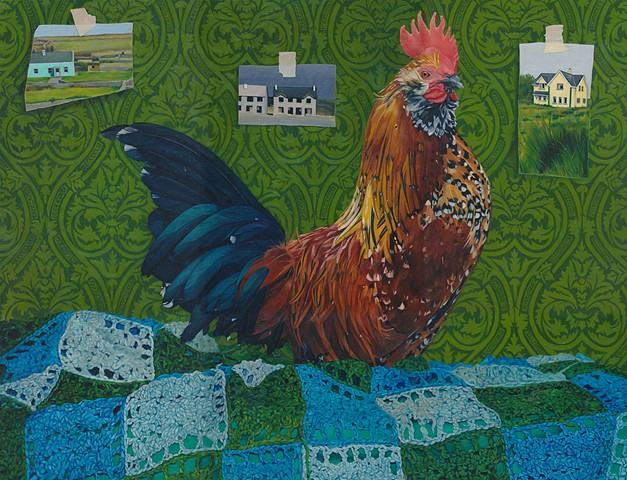 Rooster on afghan blanket with wallpaper background. Pictures of Irish Ghost Estates on wallpaper.
