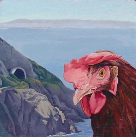 Chicken at Bray Head, Ireland. Irish landscape with chicken.