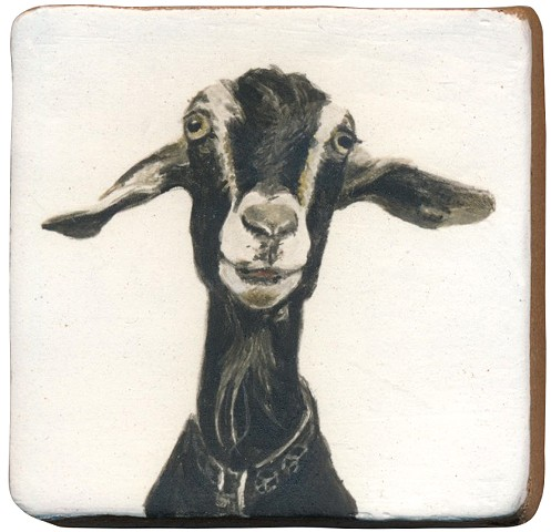 Ceramic handmade tile, hand painted with underglazes, high-fired, goat portrait by Chantelle Norton.