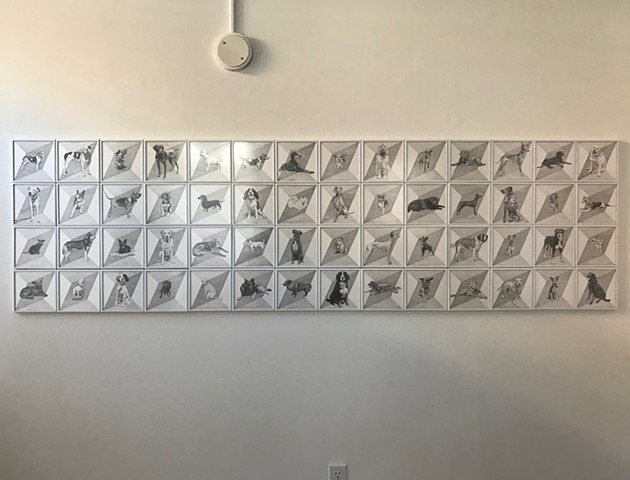 Pencil drawing installation of dog portraits against geometric background.