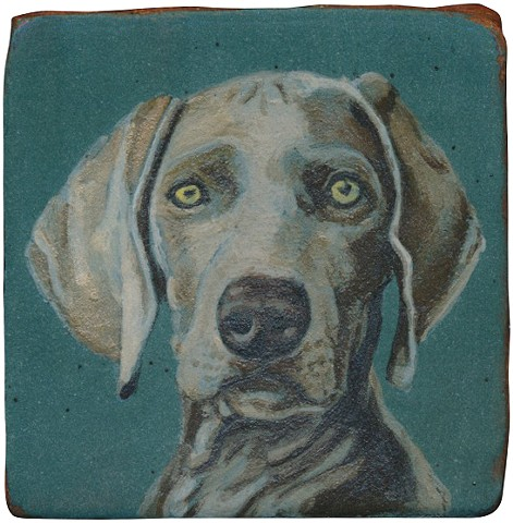 Ceramic handmade tile, hand painted with underglazes, high-fired, dog portrait of a Weimaraner by Chantelle Norton.
