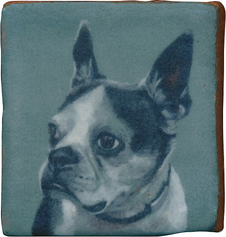 Ceramic handmade tile, hand painted with underglazes, high-fired, dog portrait of a Boston Terrier by Chantelle Norton.
