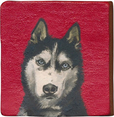 Ceramic handmade tile, hand painted with underglazes, high-fired, Husky dog portrait by Chantelle Norton.