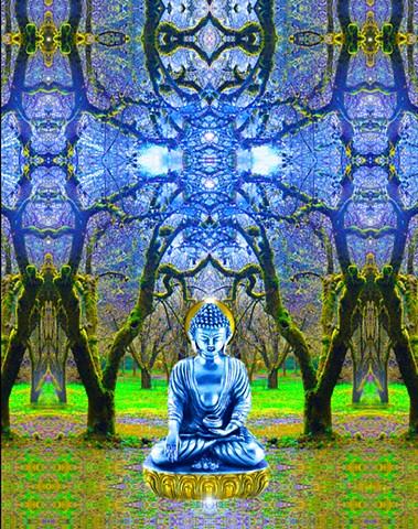 Buddha of the Rain