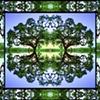 Nature's Mirrors