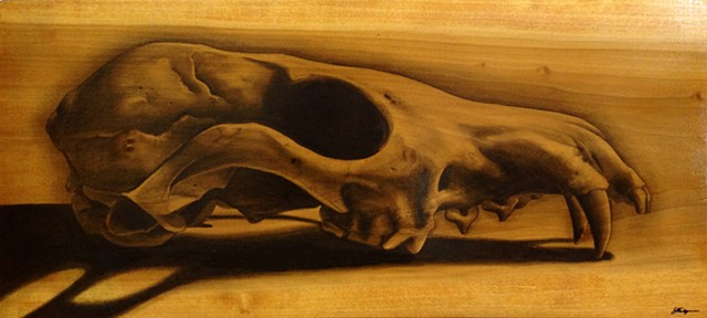 skull, fox skull, grey fox skull, skull drawing, graphite, graphite skull, graphite on wood