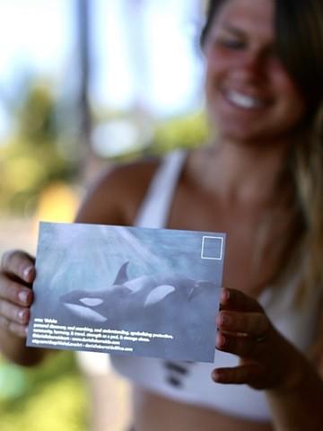 orca postcard - back
