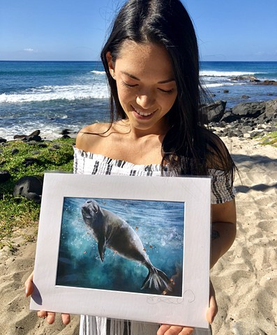 hawaiian monk seal print