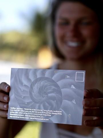 spiral postcard - back