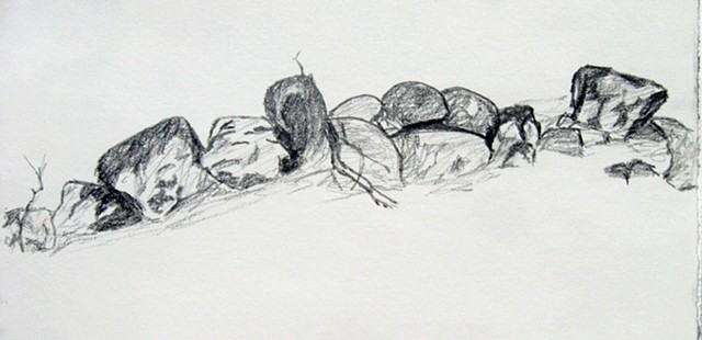 graphite drawing of a new england stone wall in the woods on Deer Isle, Maine by Chelsea Clarke