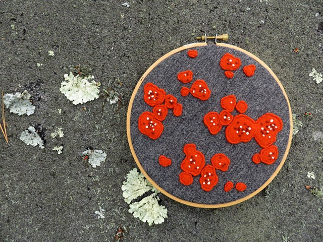 red orange wool lichen art wall hanging by chelsea clarke