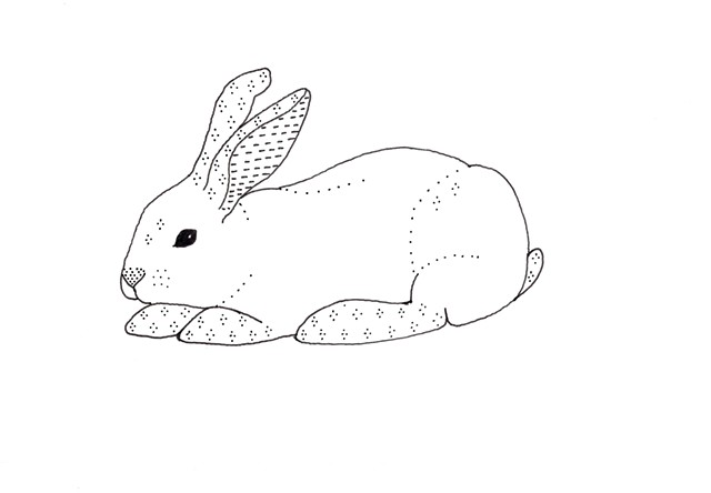 pen and ink drawing of a rabbit snowshoe hare bunny with patterns by Chelsea Clarke